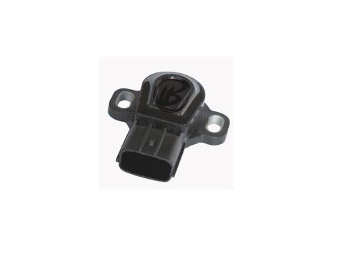 BW0419 - Throttle position sensor